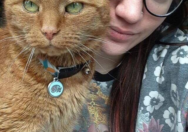 Forget Dog People, My Cat Saved My Life