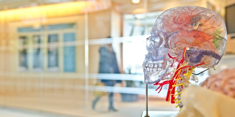 How To Train Your Brain To Get What You Want In 60Days