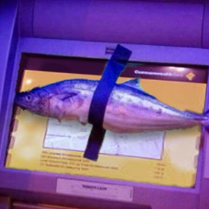 A fish taped to an ATM in protest