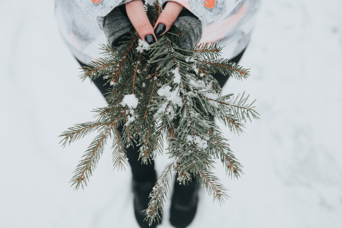 hand holding evergreen branches, little reminders, encouragement, holidays away from home