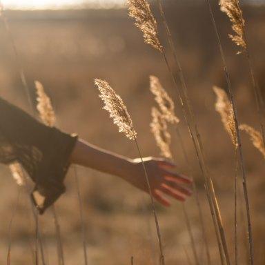 hand in field