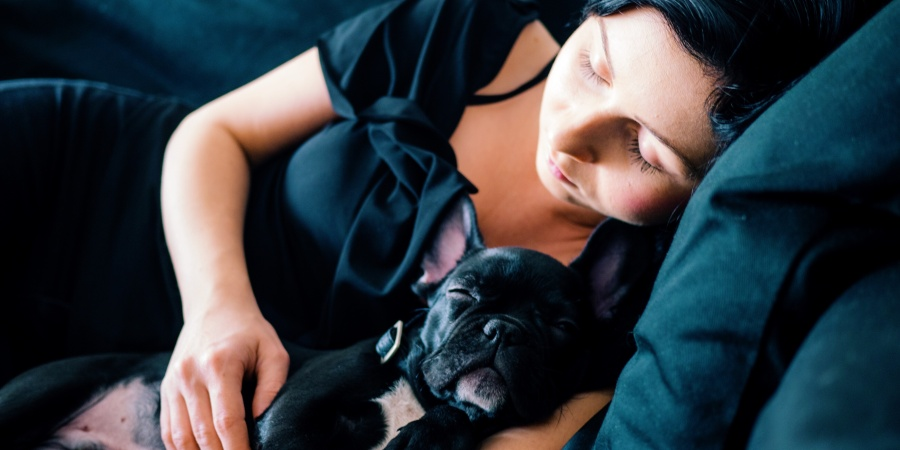 7 Little Ways Your Pet Makes Your Life Infinitely Better