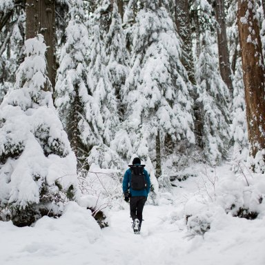 person wandering through the snow