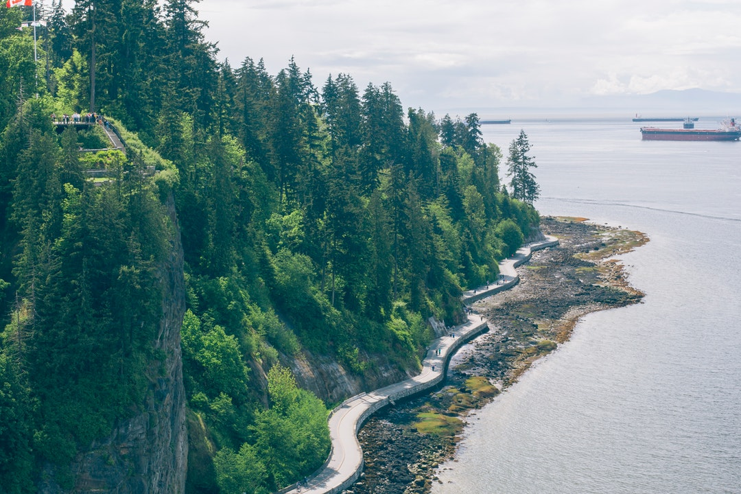 A wooded coast with people walking along the seawall and admiring the sea from an observation deck