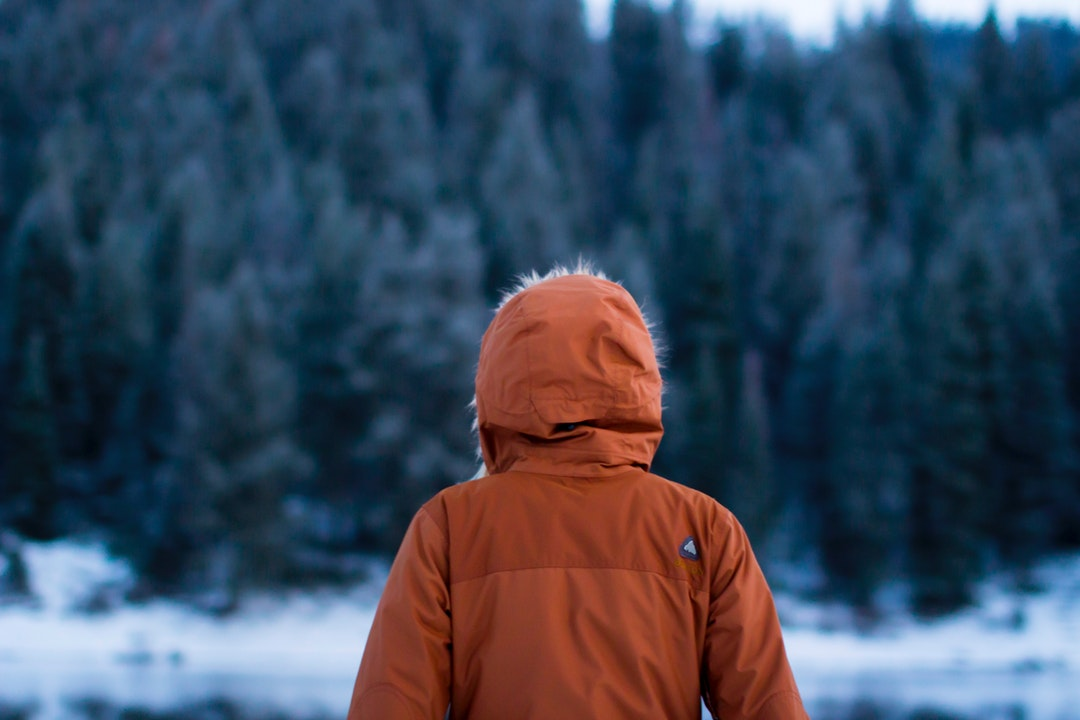 Person in orange parka looks out at the snow and evergreen trees