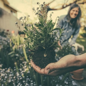 5 Things Gardening Can Teach You About Self-Care