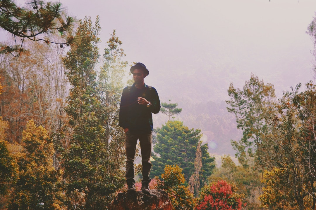 man standing on rock surrounded by trees