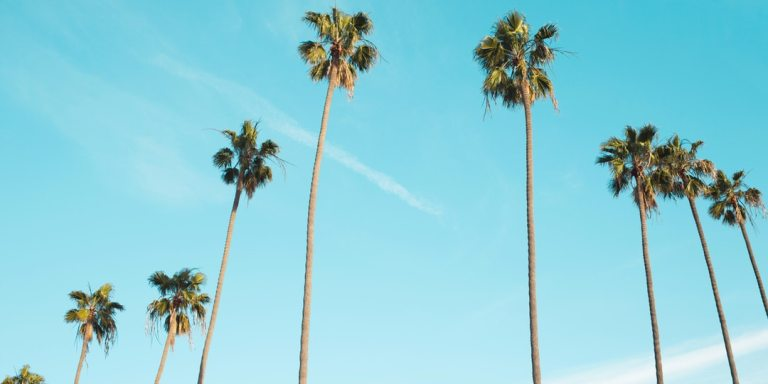 The Exact Moment I Fell In Love With LosAngeles