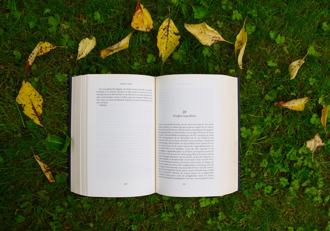 A book open to a new chapter surrounded by green grass and yellow leaves