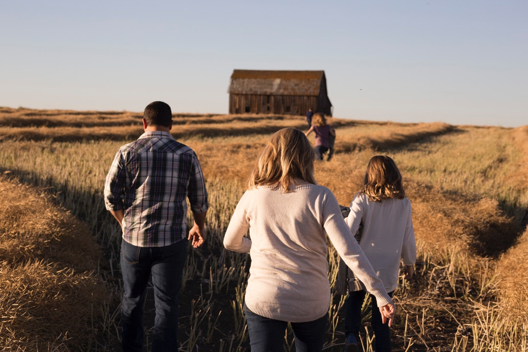 A family walking through a golden field towards a barn