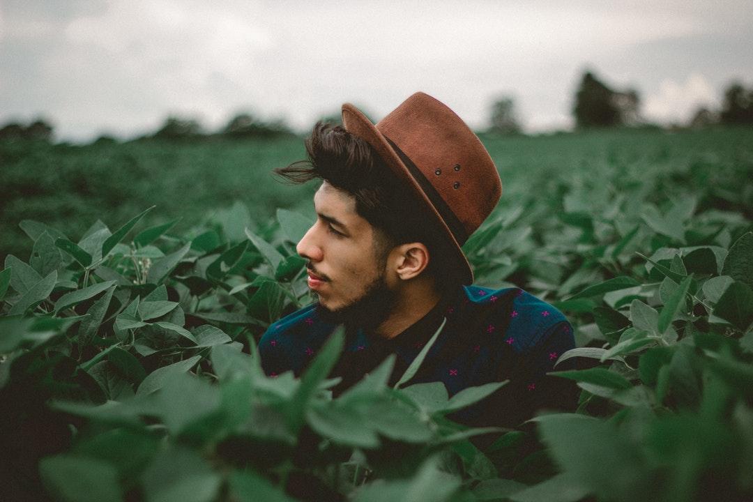 Man in a hat peeks head over a field of leaves