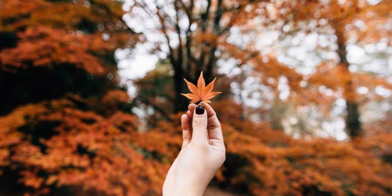With Every Season Of Your Life, Learn To LetGo