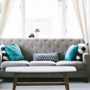 How To Pick The Perfect Decorative Throw Pillows To Scream Into For The Rest Of 2020