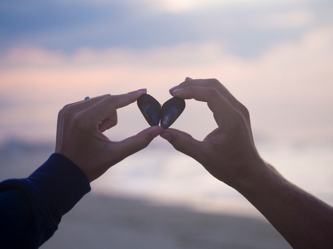 A couple holding two small shells next to each other to form a heart shape