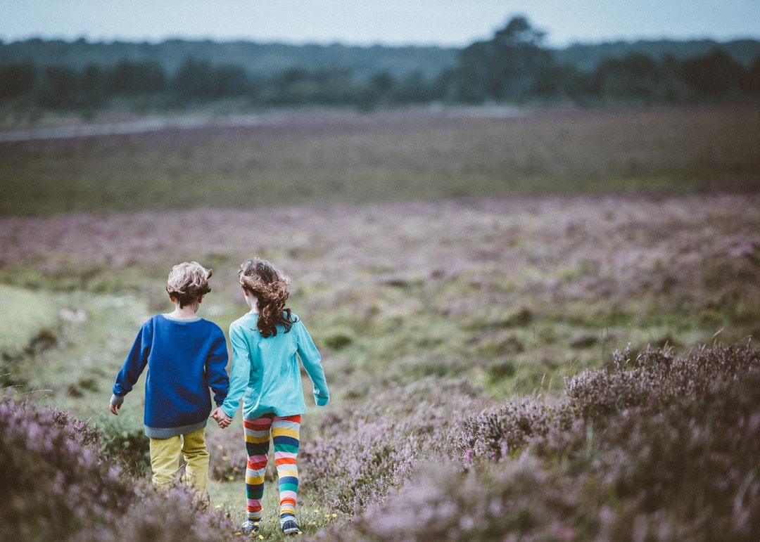 Two children hold hands while walking away from the camera in a meadow