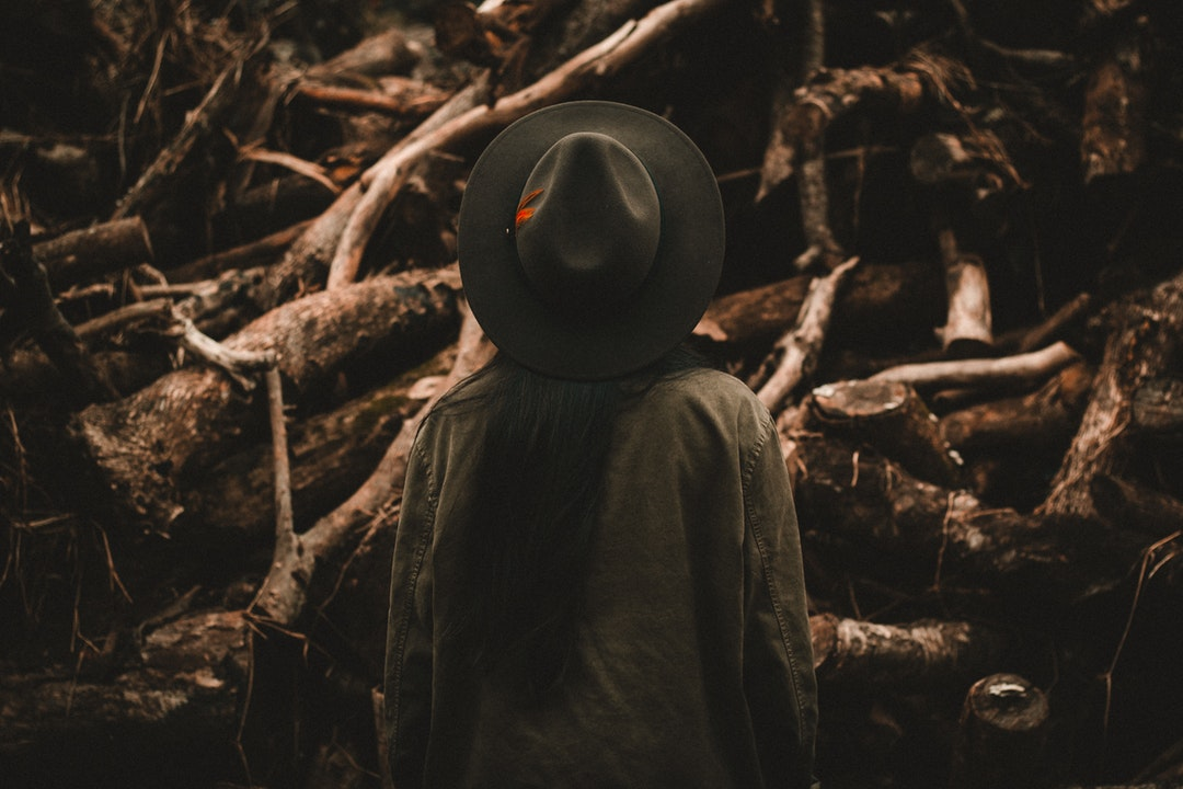 A person in a hat faces away from the camera looking at fallen trees