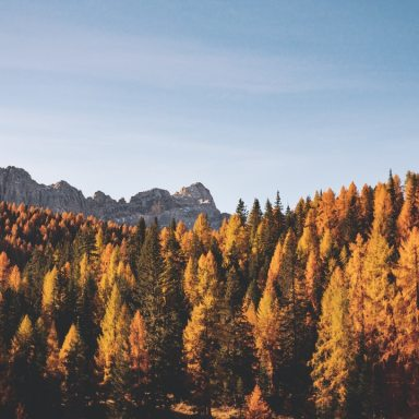 10 Simple And Fun Activities To Fall For This Autumn