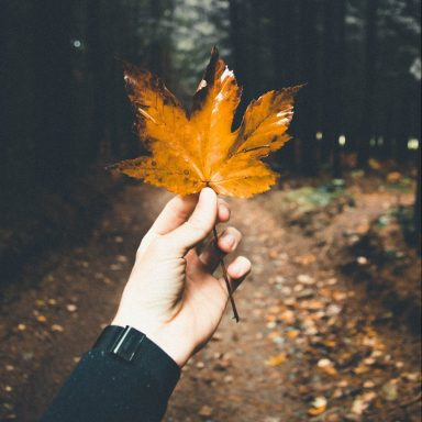 Here's Why Autumn Is An Introvert's Dream Come True