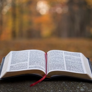 A Letter To God For When You Can't Understand But Still Believe
