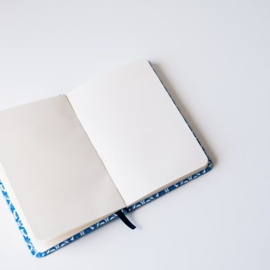 I'm Ready To Tell You What Happened After I Found My Diary I Didn't Remember Writing