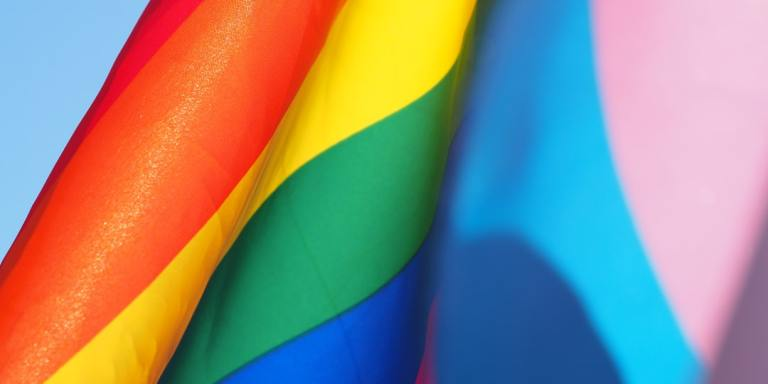 5 Ways To Celebrate Pride At Home This Year