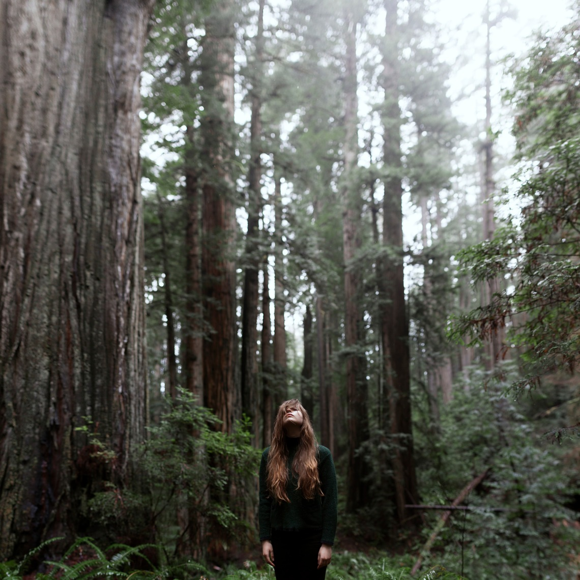 Blending into the forest, nature, camping, solitude, solo adventures, thinking, reflecting, one with the trees of the forest