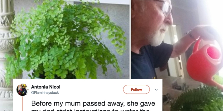 This Woman's Dying Wish To Her Husband Turned Out To Be A HilariousPrank