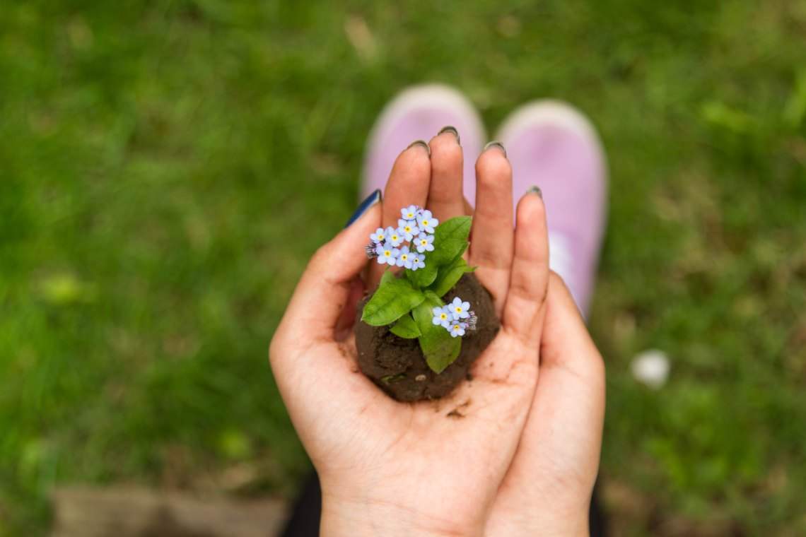 faith, seeds of faith, plant a seed, Christian faith, Christianity