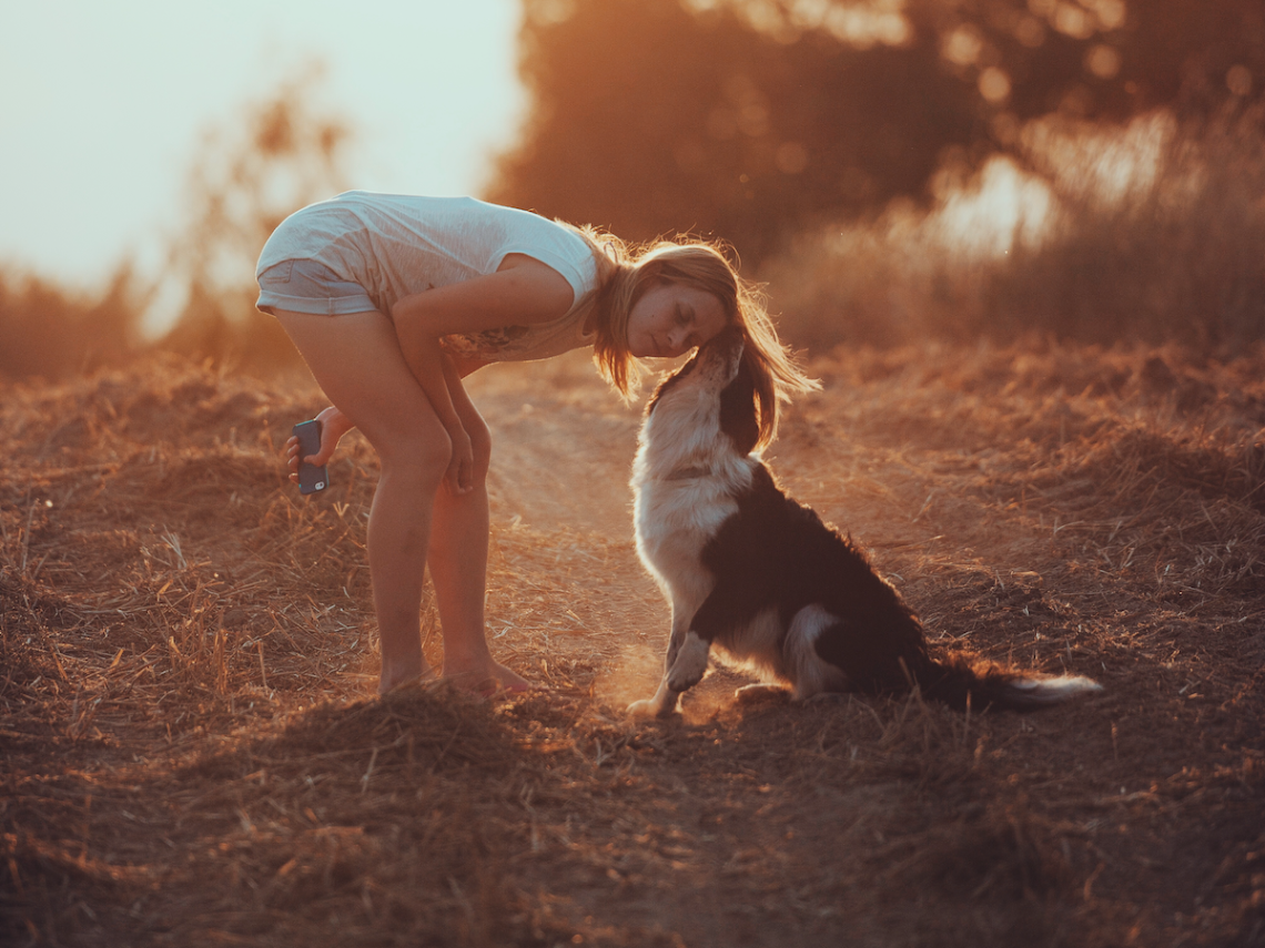24 Heartwarming Stories Of Pets Going The Extra Mile To Be Loving