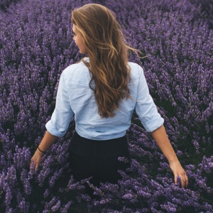 girl in a lavender field