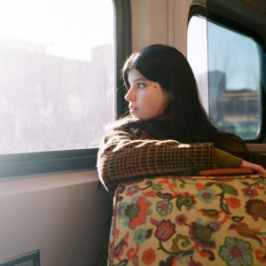 woman traveling via train
