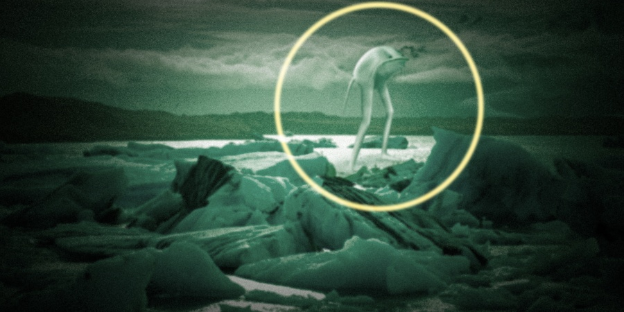 12 Facts About The Ningen, The Creepiest 'Animal' You've Never Heard Of