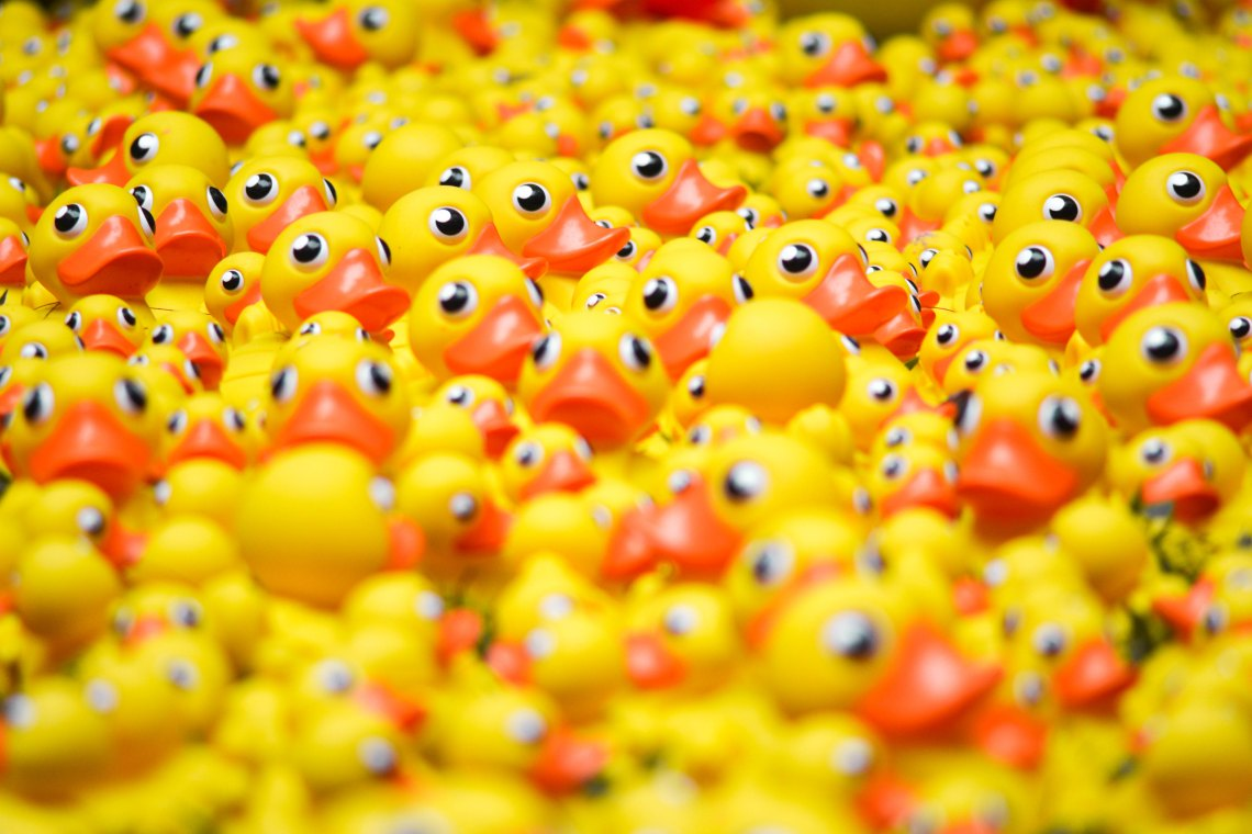 A bunch of rubber ducks