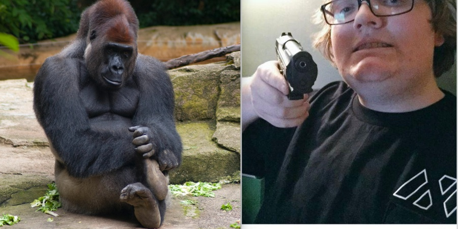 'Dicks Out For Harambe': How One Of The Internet's Most Viral Memes Became A Racist Alt-RightStatement