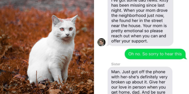 This Family Was Devastated When Their Cat Went Missing, But They Weren't Expecting This Hilariously Wild Plot Twist