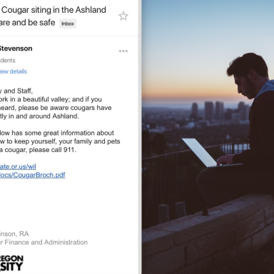 This Student Accidentally Sent His Hilarious Response To An Email About Cougar Sitings To The Entire School And The Internet Can't Stop Laughing