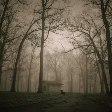 13+ Real Ghost Stories That Will Give You Chills [2020]