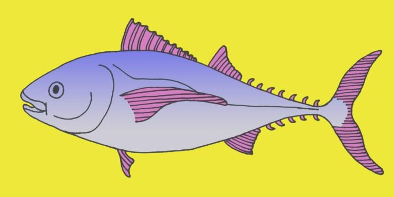 15 Tuna Puns You Should Dive RightInto