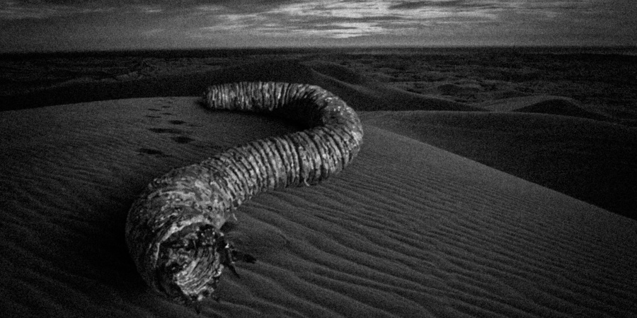 15 Disturbing Facts About The Mongolian Death Worm