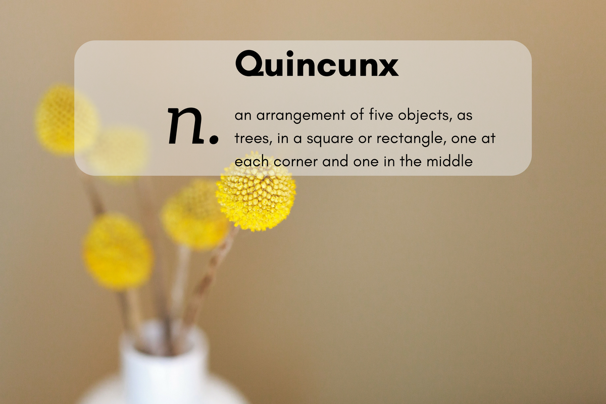 Quincunx (n.)an arrangement of five objects, as trees, in a square or rectangle, one at each corner and one in the middle