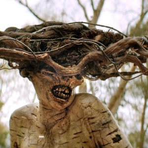 10 Reasons Why Horror Addicts Should Not Miss An Episode Of 'The Birch'