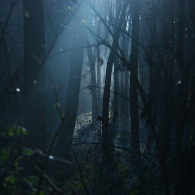 25 True Scary Stories That Will Freak You Out Today