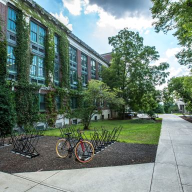 7 Practical Ways To Be More Eco-Friendly As A College Student
