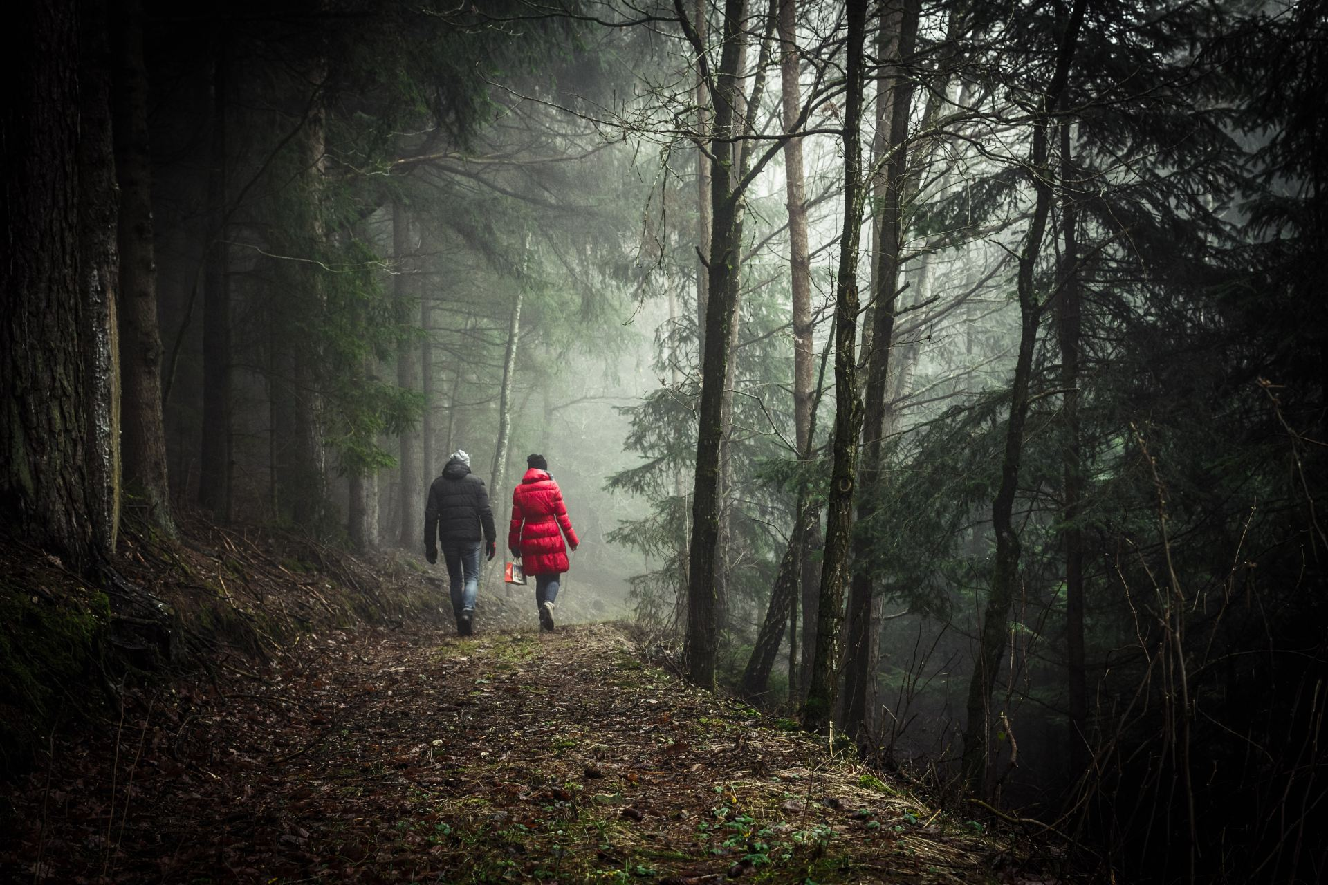 30 Hikers On The Single Scariest Thing They've Seen Deep In The Woods
