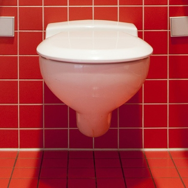 17 People Who Died On The Toilet