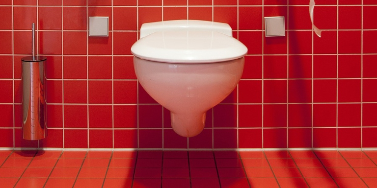 17 People Who Died On TheToilet