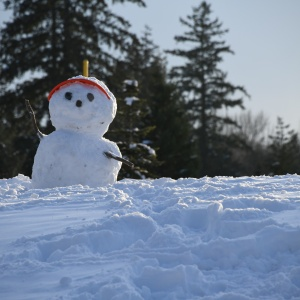 I Never Should Have Built A Snowman In My Backyard