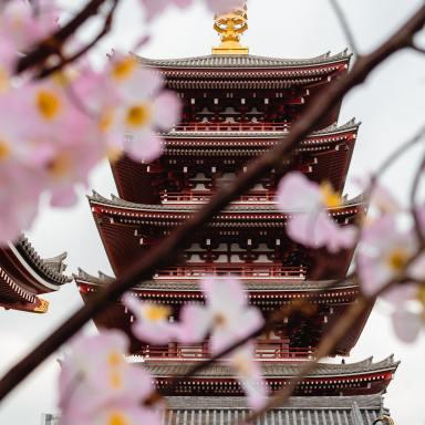 60+ Most Popular Japanese Last Names