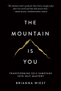 The Mountain Is You: Transforming Self-Sabotage IntoSelf-Mastery