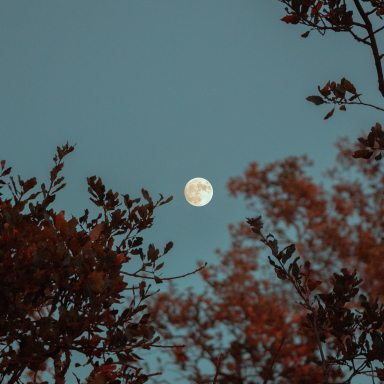 A Non-Comprehensive List Of Self-Care Rituals For The Full Moon